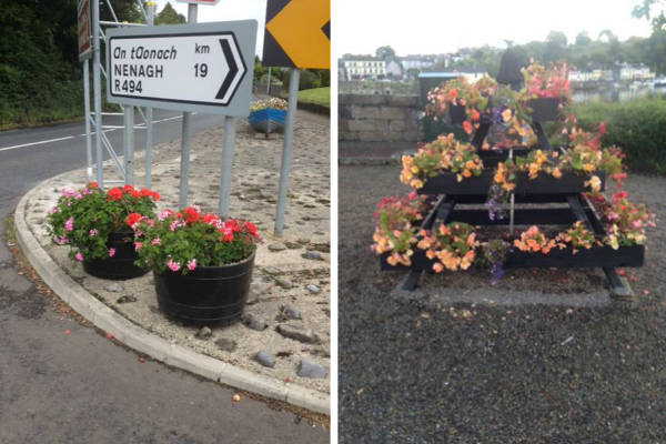 Floral displays in Ballina